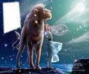 Zodiac : Lion 1