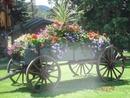 arreglo floral en carreta
