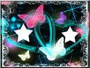 papillons couleur fluo 2 photos