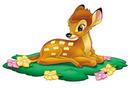 Bambi bébé