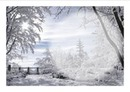 joli paysage hiver