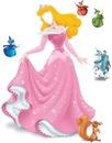 Princesse : Aurore