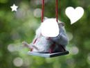 hamster,echo de alexia
