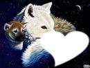 LOVE SPACE W W F