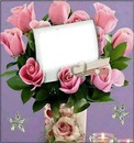 amor color de rosa