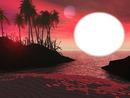 nuit paradisiaque
