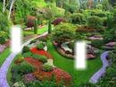 green lusious garden