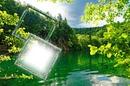 reflets nature