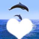l'ocean de l'amour