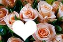 Ces quelques roses pour te dire je t'aime maman*