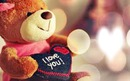 I love you Nounours <3