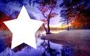 estrella rosse