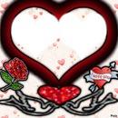 amour fahmii