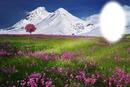 Virágos rét hegyel