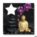 bouddha - zen