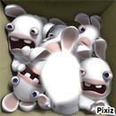 lapins crétins coller