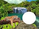 Naturaleza Cascada del Tigre