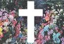 croix swag