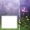 Fleur mauve-rose-amour