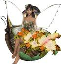 ailes magiques2
