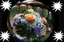 fleures dans l'epace
