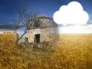 moulin dans les blés
