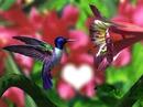 oiseau dans une fleur