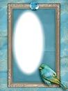 cadre bleu oiseau