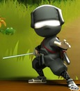 mini ninja hiro