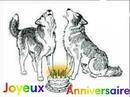 cadre avec 2 loups joyeux anniversaire 1 photo