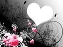 multi coeur