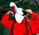 Bonnet de Noël cigogne Alsace