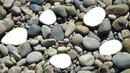 pierre *5 galets plage