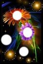 Vive fleur 1 fleurs
