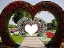 les jolie coeur