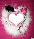 coeur de plumes