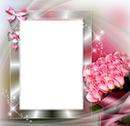 cadre de roses