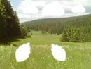 love la nature
