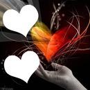 doppio cuore