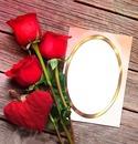Cc mis rosas y yo