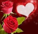 rouse corazon