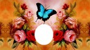 butterfly an roses