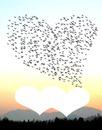 des oiseaux en forme de coeur  2 photos  coeurs