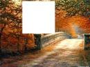 calido otoño
