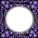 avatar violette