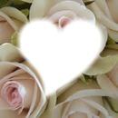 Coeur dans rose