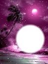 nuit rose étoilée