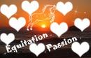I Love Equitation