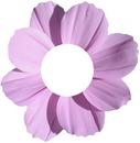flor / fleur / fiore