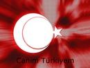 ahmet bayrak